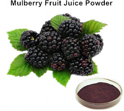 Mulberry Fruit Juice Powder